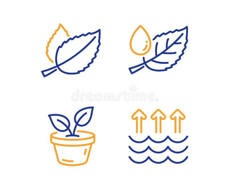 Чеканьте набор значков листьев, росы листьев и лист Знак испарения Mentha травяной, растет завод, падение воды r бесплатная иллюстрация