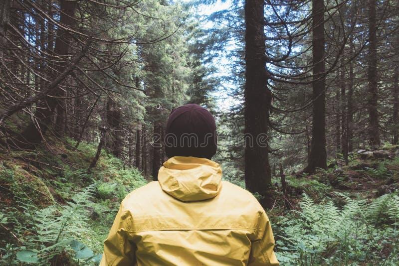 Человек в желтом jaket в одичалом лесе стоковая фотография rf