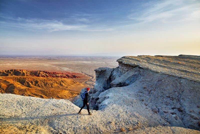 Download Человек в пустыне стоковое изображение. изображение насчитывающей горяче - 113819207