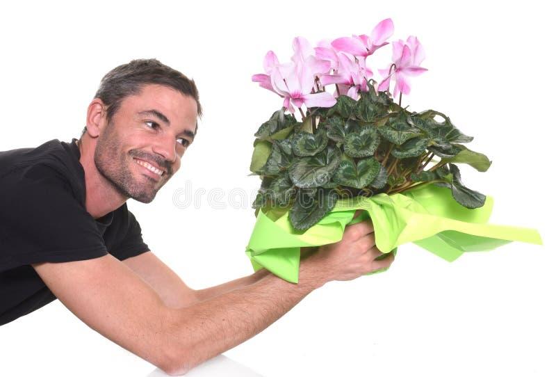 Человек давая cyclamen стоковая фотография rf