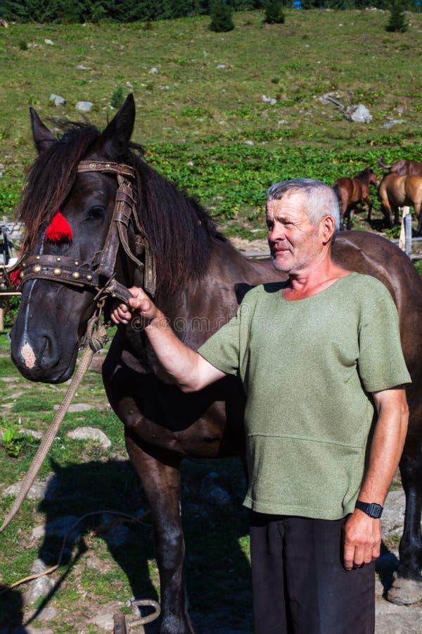 Человек держа лошадь проводкой стоковая фотография rf
