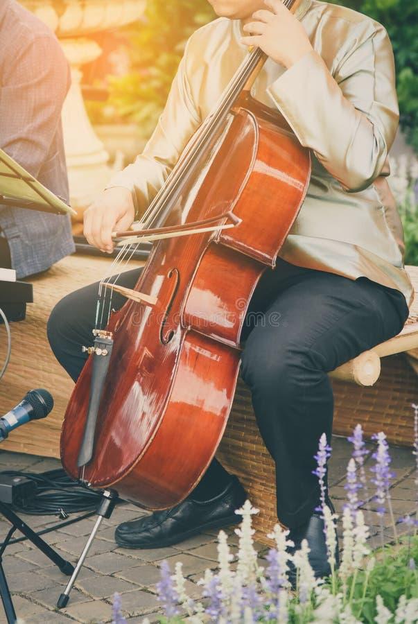 Человек играя виолончель в золоте света утра стоковое фото