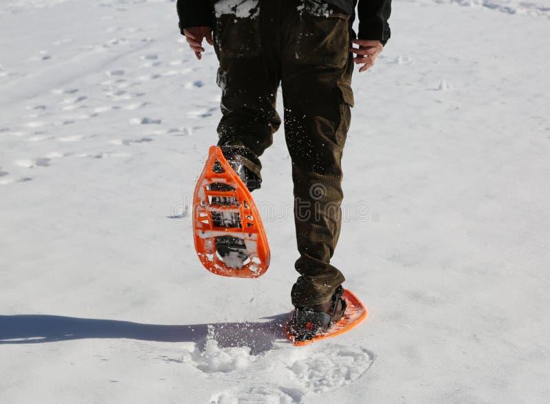 Человек идет с оранжевыми snowshoes и брюками корд на снеге стоковые изображения