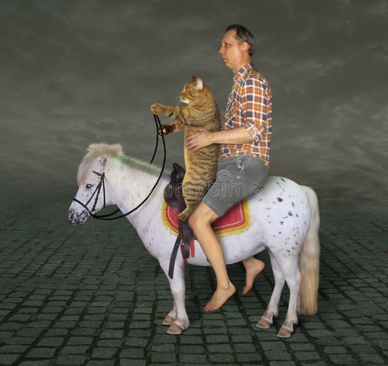 Человек и его кот на пони стоковые фотографии rf