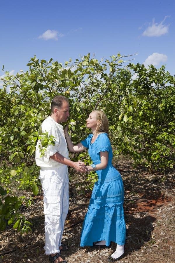 Человек и женщина, любящая пара, делают объявление влюбленности на плантации апельсинов, Кубе стоковая фотография