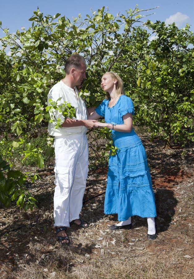 Человек и женщина, любящая пара, делают объявление влюбленности на плантации апельсинов, Кубе стоковое изображение