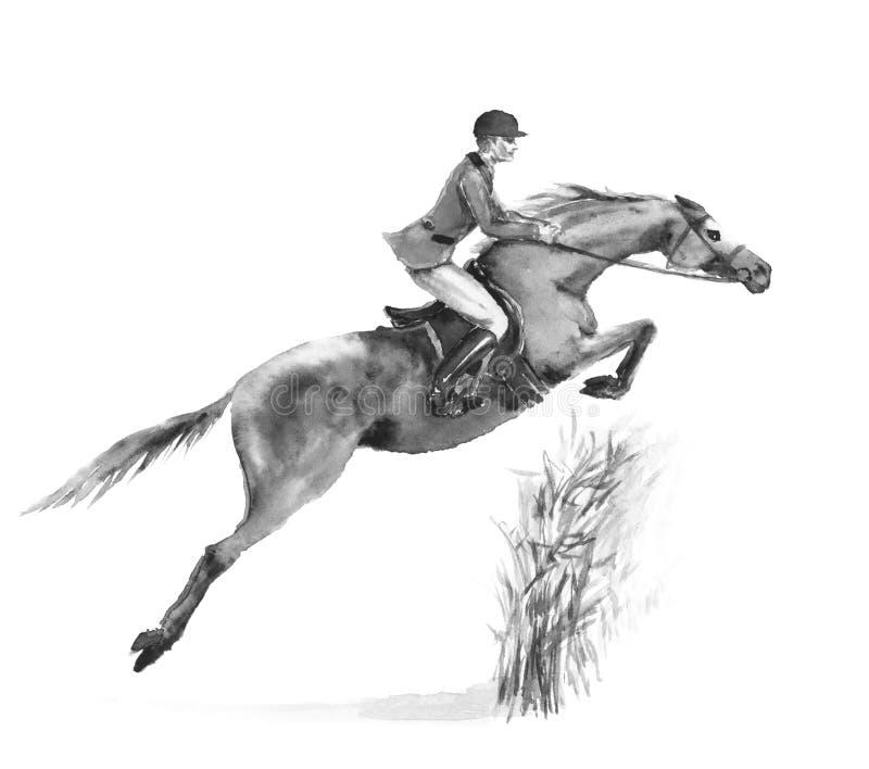 Человек и лошадь всадника спины лошади скача в лес на белизне Черно-белая monochrome иллюстрация чертежа руки акварели или чернил иллюстрация штока