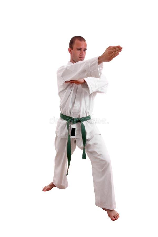 человек карате стоковая фотография