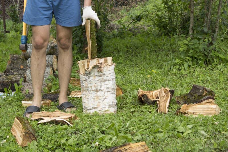 Человек кладет входит в систему чурка и древесина отбивных котлет стоковые изображения rf