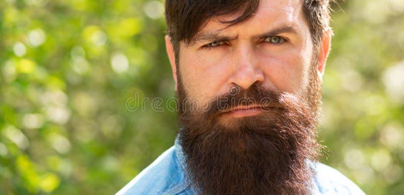 Человек на предпосылке природы Бородатый парень Молодой мужской хипстер Привлекательный человек с зелеными глазами Мужской портре стоковое фото rf