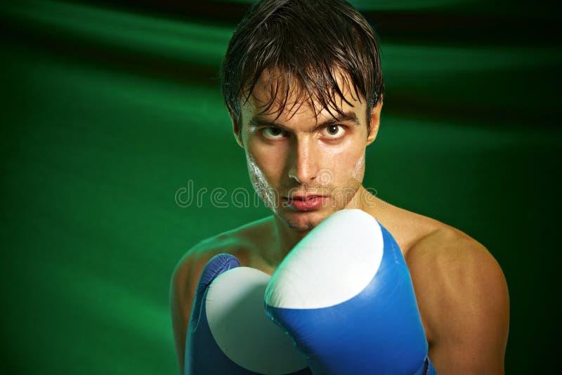 человек перчаток бокса стоковые фотографии rf