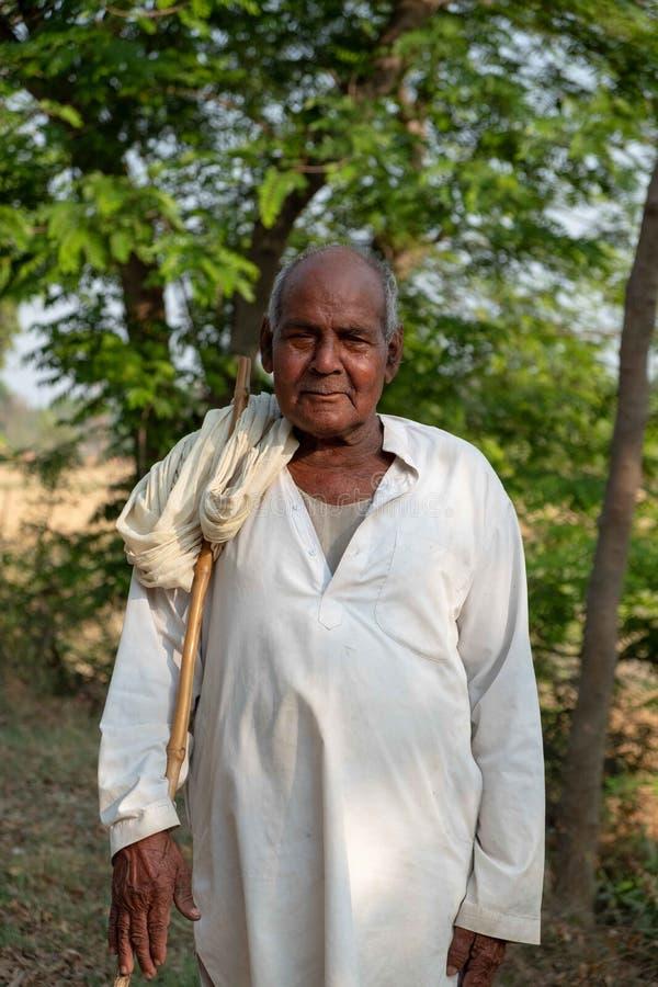 Человек представляет для фото пока табунящ скотин вне Bhadarsa стоковое изображение