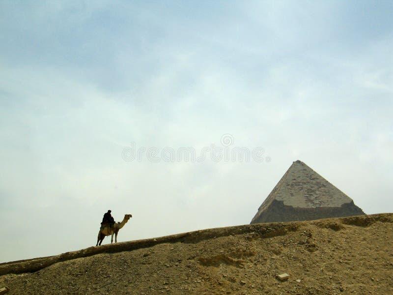 человек пустыни верблюда стоковая фотография