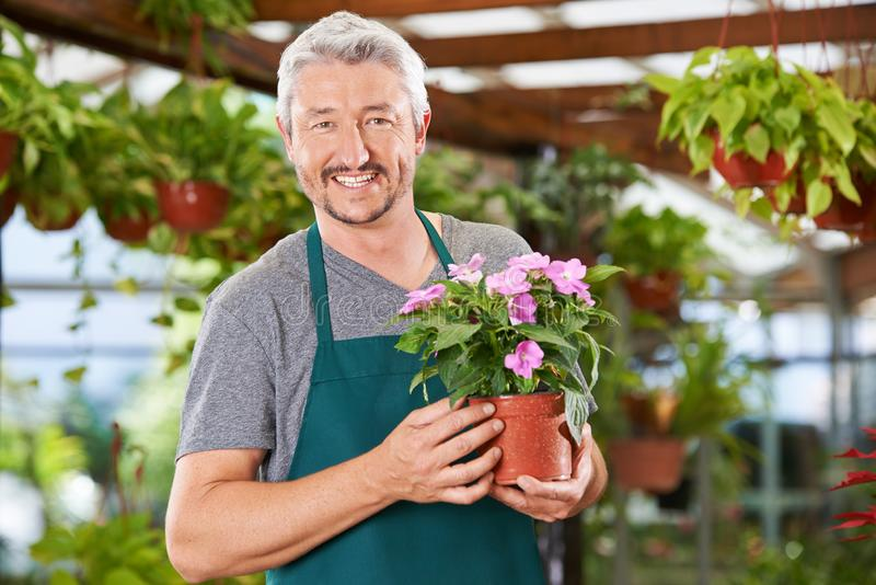 Человек работает как флорист в садовом центре стоковое фото