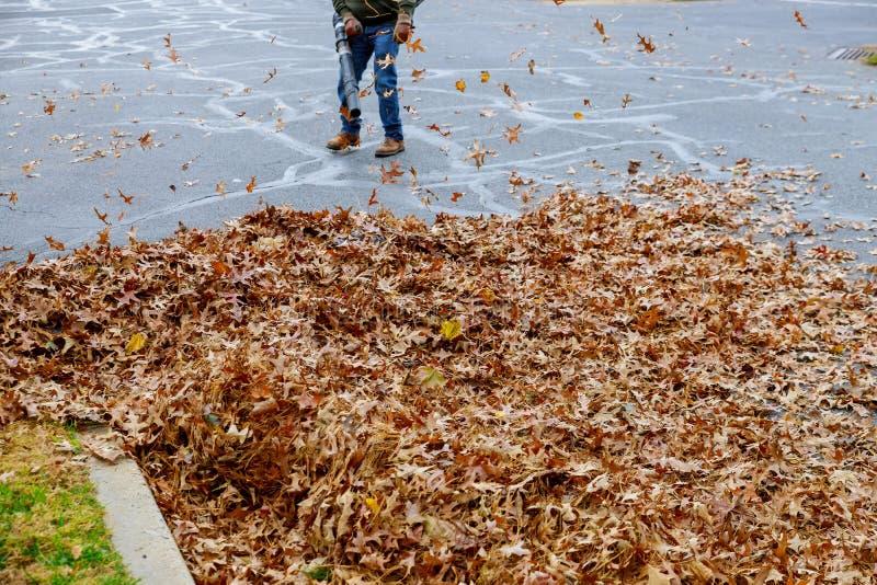 Человек работая с воздуходувкой лист листья вверх и вниз на солнечный день стоковые фото