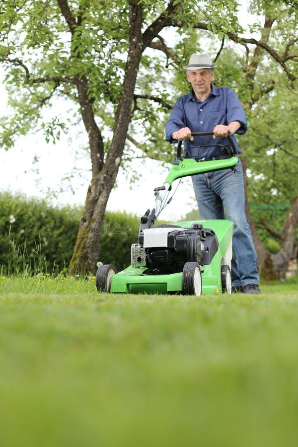 Человек работая с газонокосилкой в его саде стоковая фотография