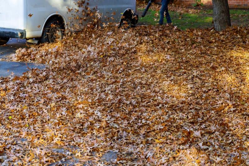 Человек работая с листьями воздуходувки лист вверх и вниз на солнечный день стоковое фото