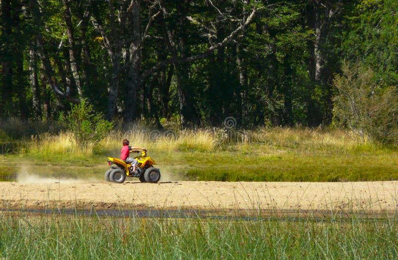 Человек ребенка ландшафта природы Outdoors управляя предпосылкой окружающей среды леса зеленого цвета моторного транспорта стоковые изображения rf