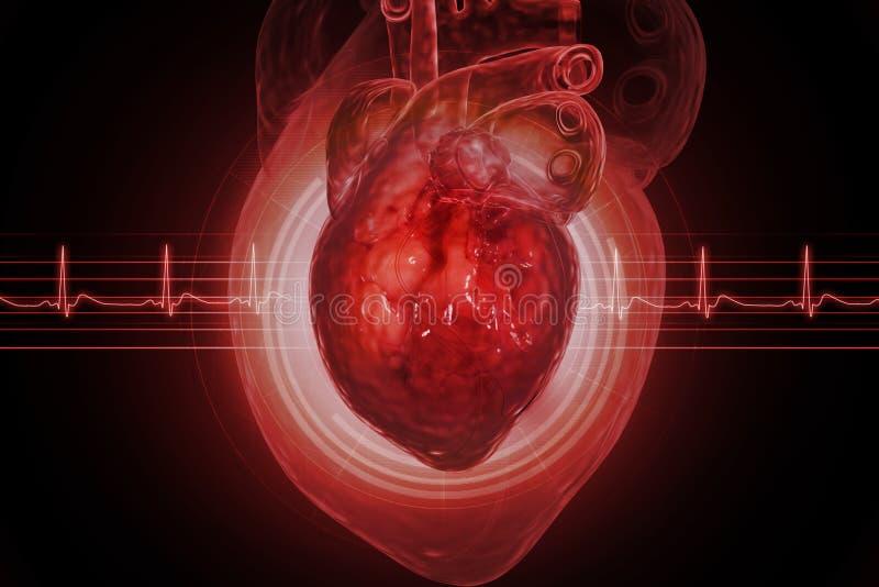 человек сердца иллюстрация вектора