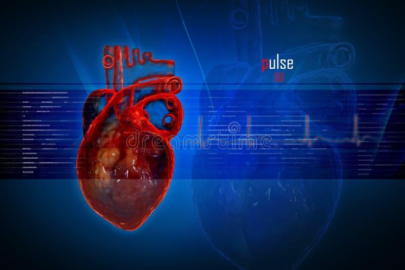человек сердца бесплатная иллюстрация
