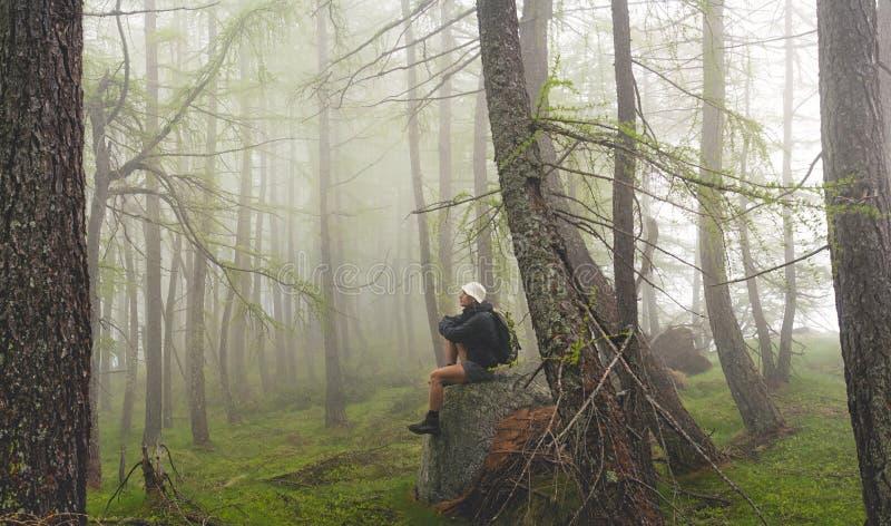 Человек сидя в туманном лесе, итальянских Альп стоковые фотографии rf