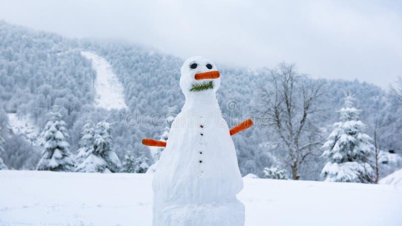 Человек снега в зиме, человек снега с носом моркови и лес с горами на заднем плане, снеговик в погоде Snowy стоковое фото