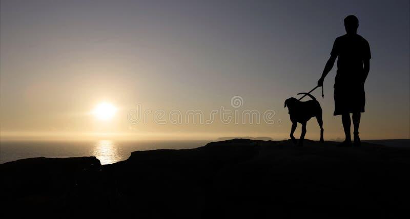 человек собаки стоковая фотография