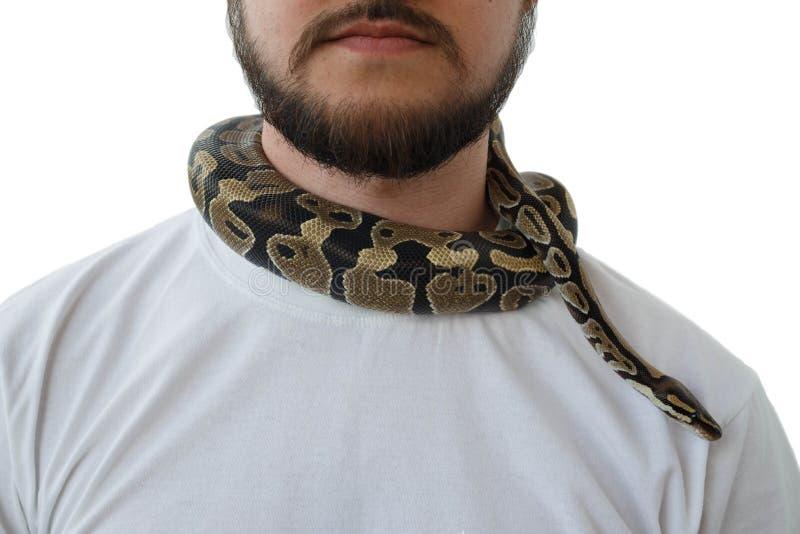 Человек со змейкой вокруг его шеи o Змейка вокруг шеи человека стоковое фото