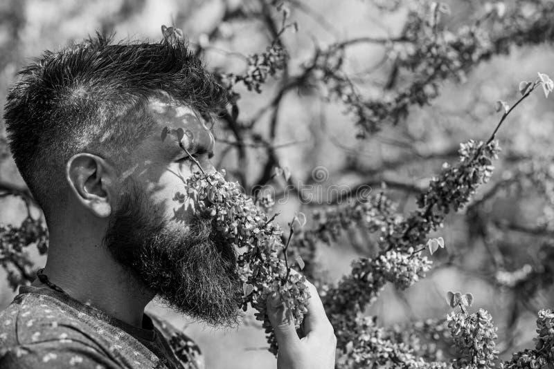 Человек с бородой и усик на спокойной стороне около цветков на солнечный день Парфюмерия и концепция благоуханием Бородатый челов стоковая фотография