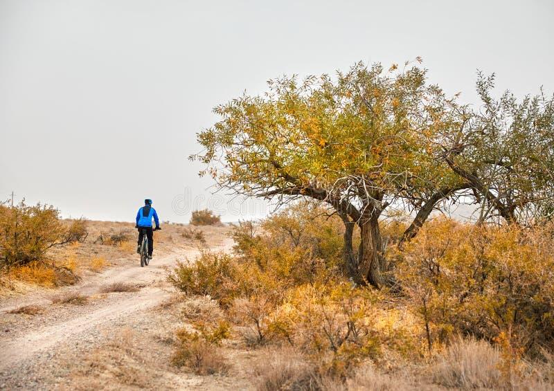 Человек с горным велосипедом в пустыне стоковые фотографии rf