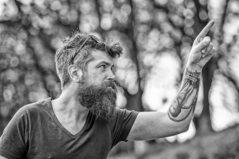 Человек с длинной бородой и усик указывая вверх с пальцем, defocused предпосылкой Гай смотрит холодным с стильной бородой стоковые фотографии rf