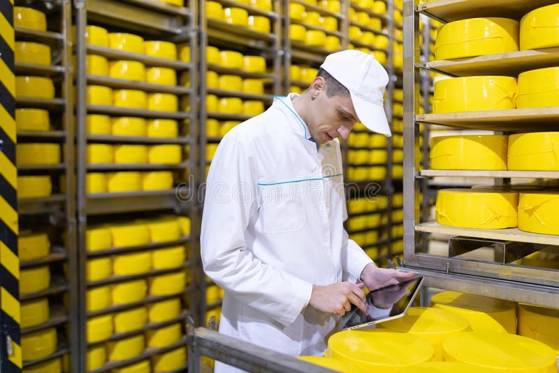 Человек с планшетом в его руках в складе сыров стоковое изображение
