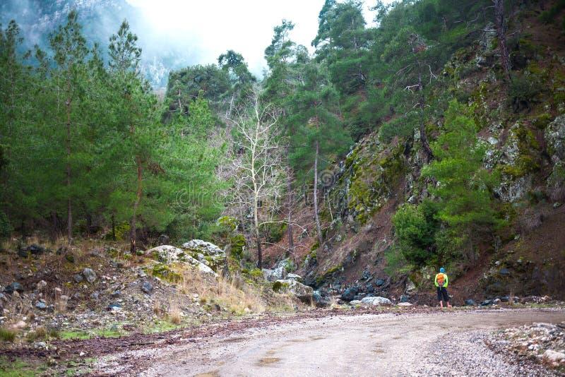 Человек с рюкзаком на дороге горы стоковое изображение rf