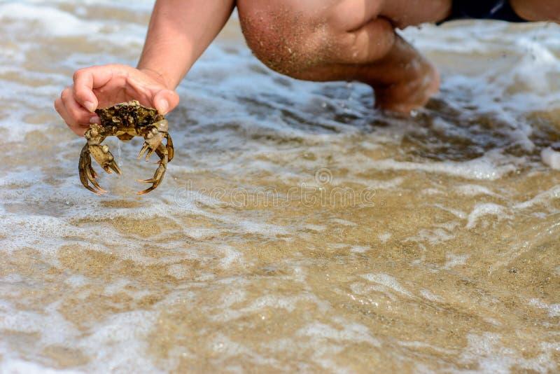 Человек уловил красивого краба в бурных волнах Чёрного моря стоковое изображение
