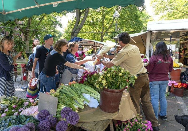Человек 19-5-2018 цветка Берлина Германии a в его стойле на рынке продает его цветки к его клиентам, на солнечный теплый день стоковая фотография rf