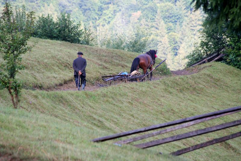 человек ld следовать тележкой лошади в горах стоковое изображение