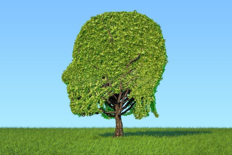 Человеческая голова сформировала дерево на зеленой траве против голубого неба, 3D r иллюстрация штока