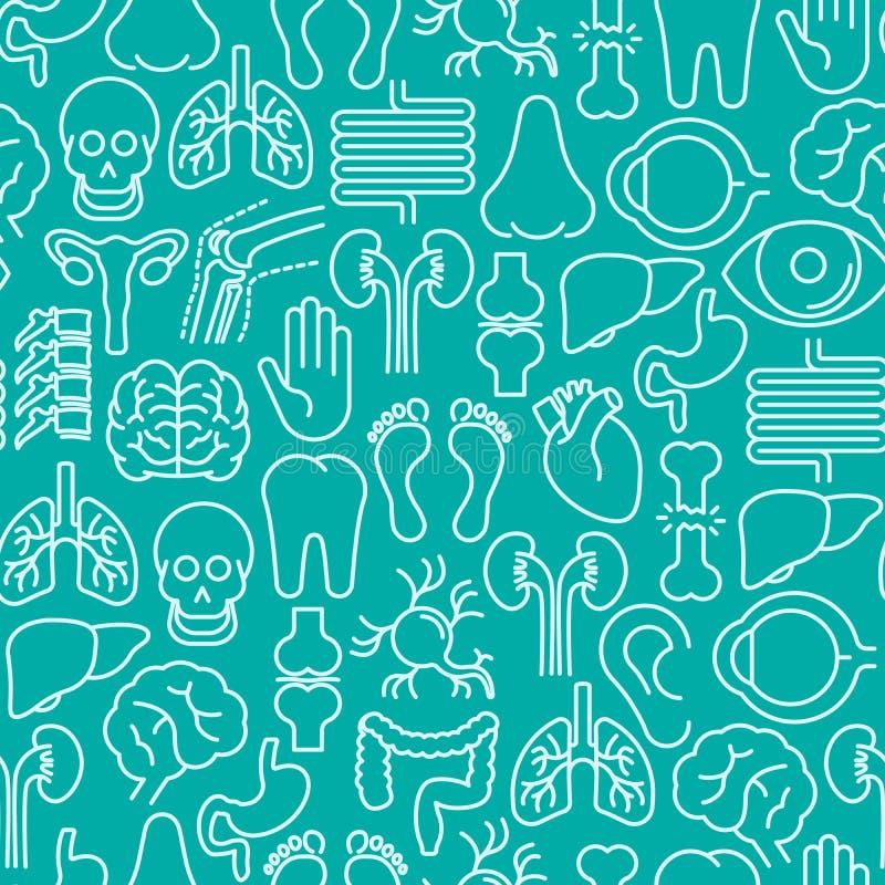 Человеческая картина внутренних органов безшовная иллюстрация вектора