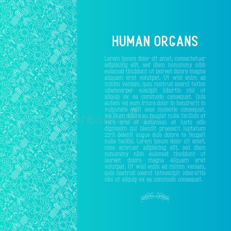Человеческая концепция внутренних органов с тонкой линией значками иллюстрация штока