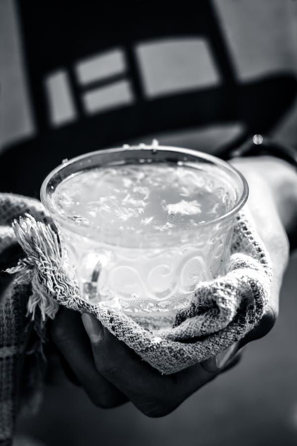 Человеческая рука держа белый лимон имбиря в его руке с полотенцем по мере того как оно горяче стоковое фото
