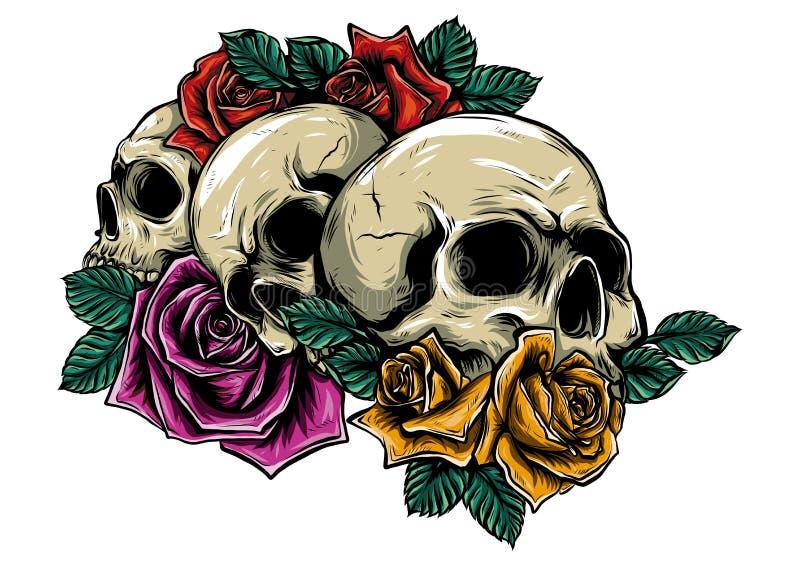 Человеческие черепа с розами на белой предпосылке иллюстрация штока