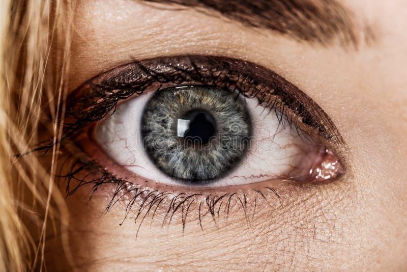 Человеческий голубой глаз, близкий взгляд стоковые фотографии rf