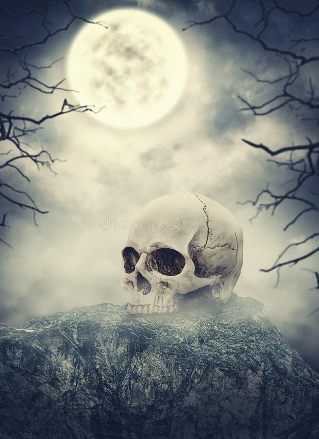 Человеческий череп на камне против пугающего неба против летучих мышей полный halloween преследовал место тыквы луны дома стоковые фото