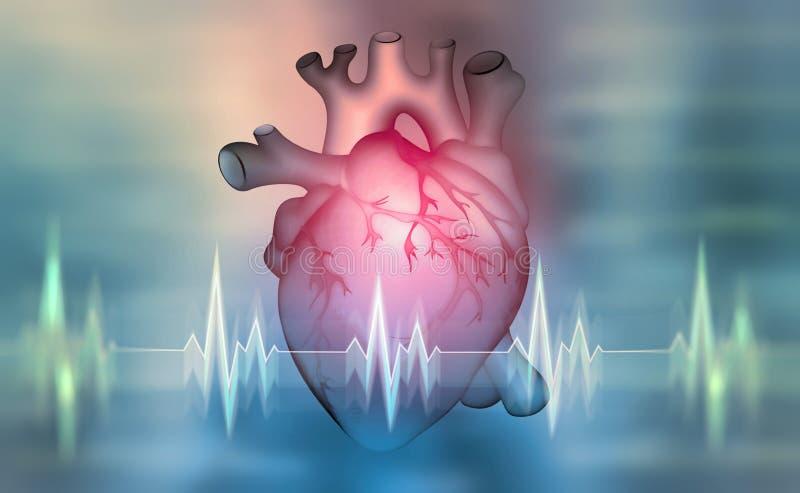 Человеческое сердце иллюстрация 3D на медицинской предпосылке бесплатная иллюстрация