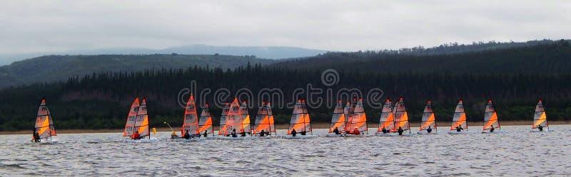 Чемпионаты 2015 плавания мира RS Tera стоковые фотографии rf