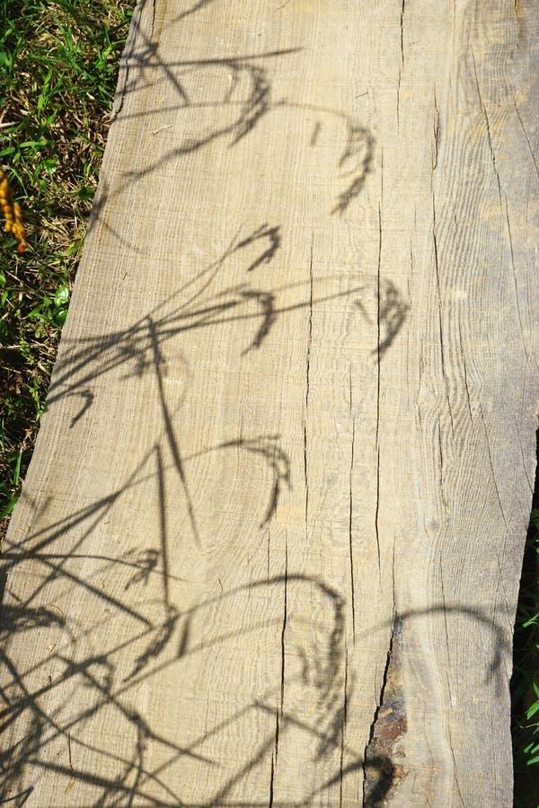 Черенок риса бросили тени на выдержанной деревянной планке на солнечный день в сельском Лаосе стоковая фотография rf