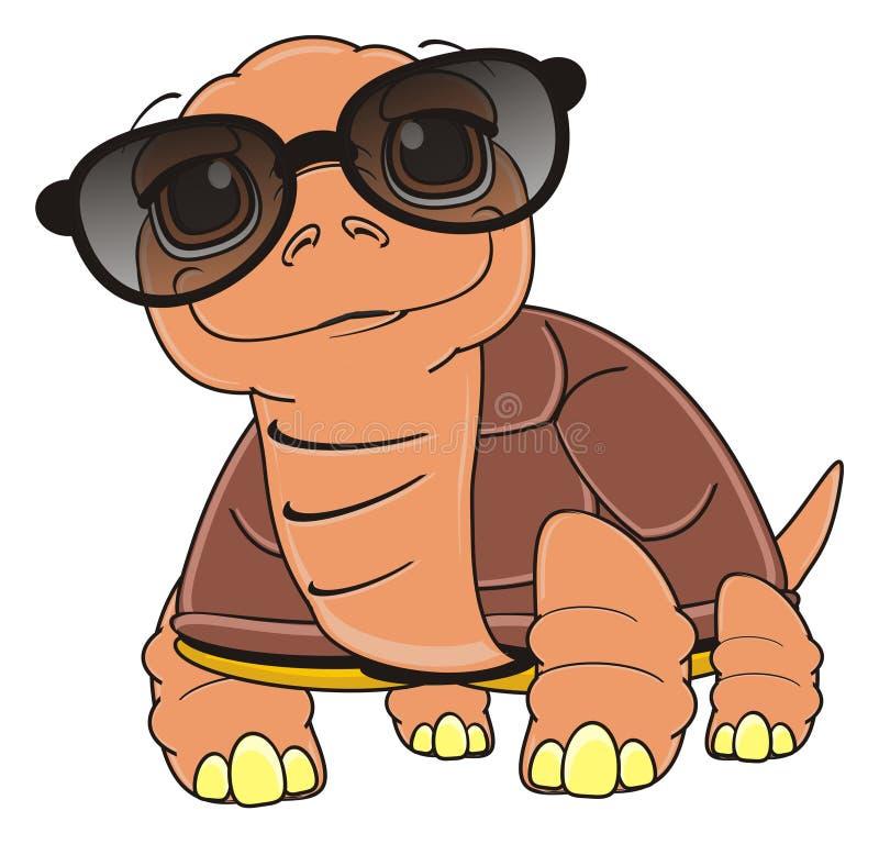 участок картинки черепаха в очках знаменитость стала
