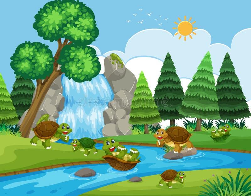 Черепаха играя в реке иллюстрация штока
