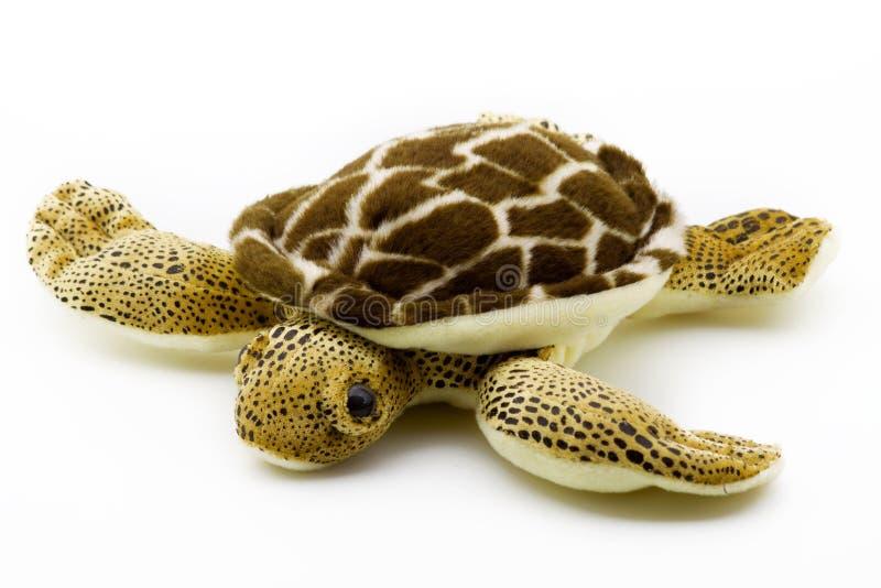 черепаха плюша стоковое изображение rf