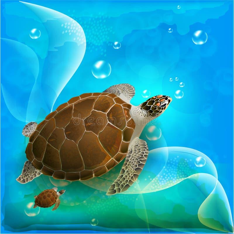черепахи семьи иллюстрация вектора